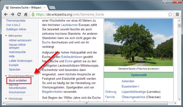 Wikipediaeintrag als eBook - Buchfunktion einschalten