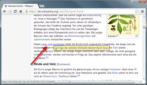 Wikipediaeintrag als eBook - Link aus dem Dokument dem Buch hinzufügen
