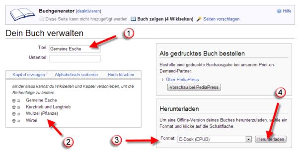 Wikipediaeintrag als eBook - Buch fertigstellen und Format auswählen