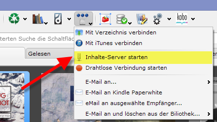 Calibre_Inhalte-Server_starten