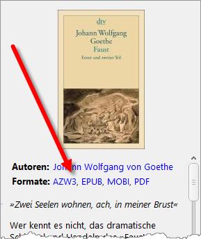 ebookformate_in_den_buchdetails