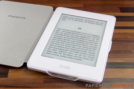 Kindles lassen Windows 10 abstürzen