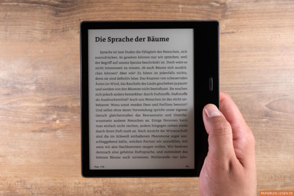 Kindle Oasis 2019 in der Hand